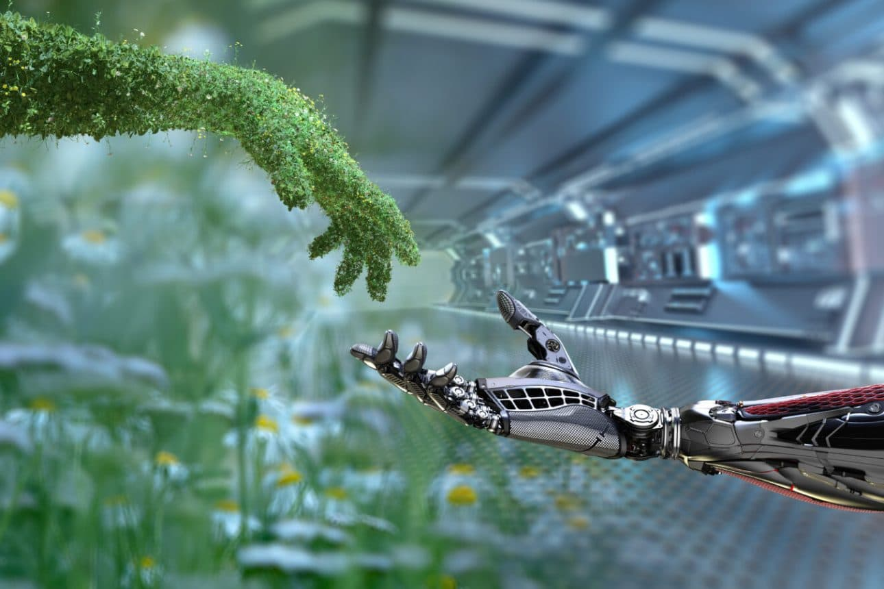 The coolest Tech Startups Preaching Sustainability in 2021