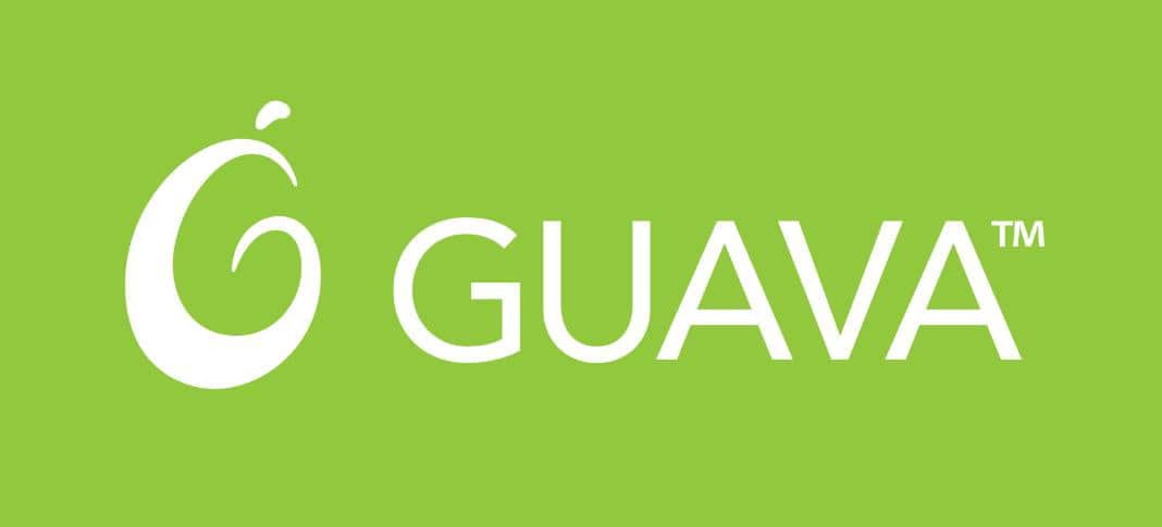 Guava: A Treasure Trove of Java Functionality